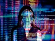 Nexodon: Software bringt Franchiseportal zum Erfolg