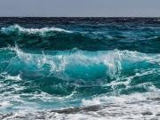 DAS FUTTERHAUS spendet 40.000 Euro für Maritime Müllabfuhr